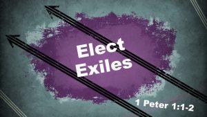Elect Exiles - TN